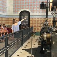 Ciencia en familia: Paseamos por el museo